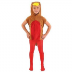 ROBIN RED BREAST BIRD CHILDRENS TABARD FANCY DRESS COSTUME